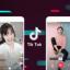 TikTok : le nouvel Eldorado du marketing d'influence numérique